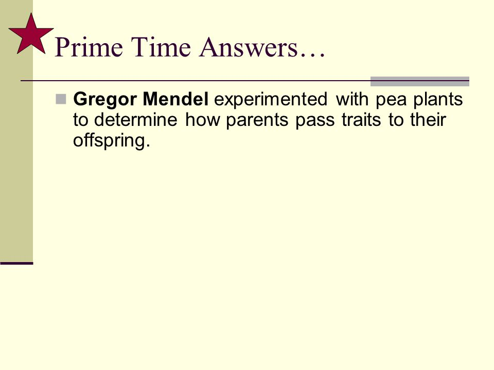 Prime Time Answers… Gregor Mendel experimented with pea plants to determine how parents pass traits to their offspring.