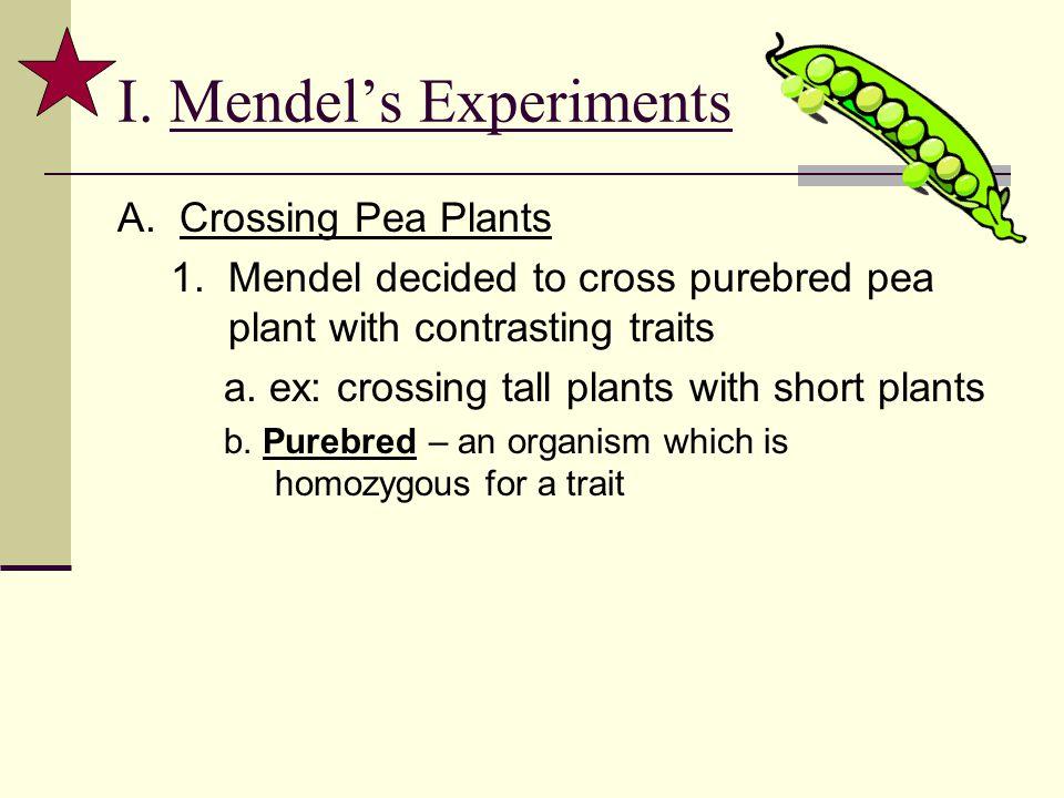 I. Mendel's Experiments