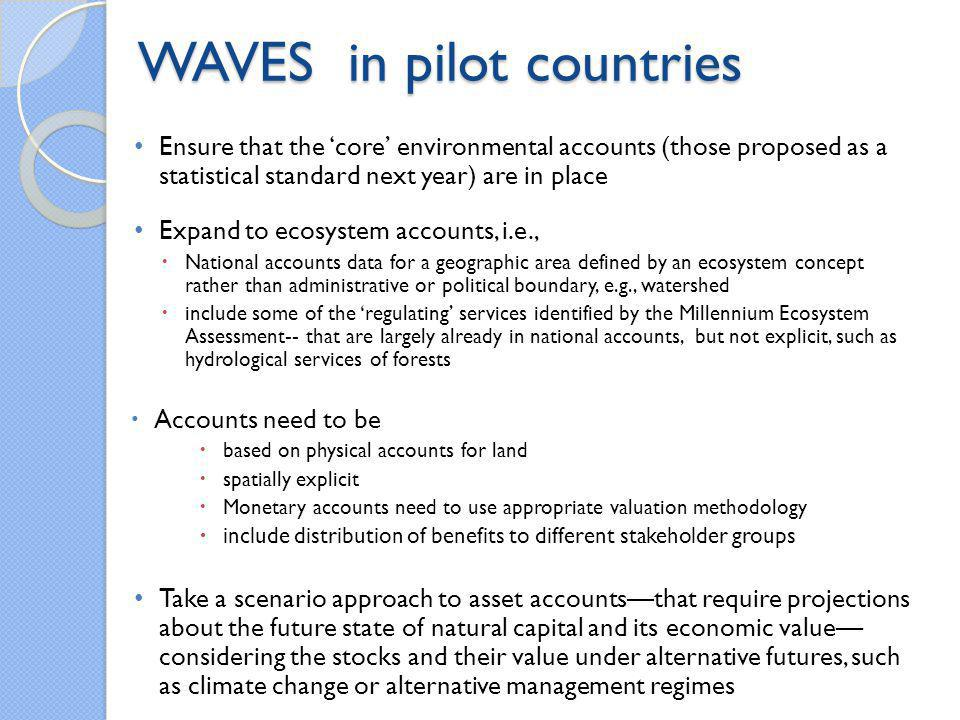 WAVES in pilot countries