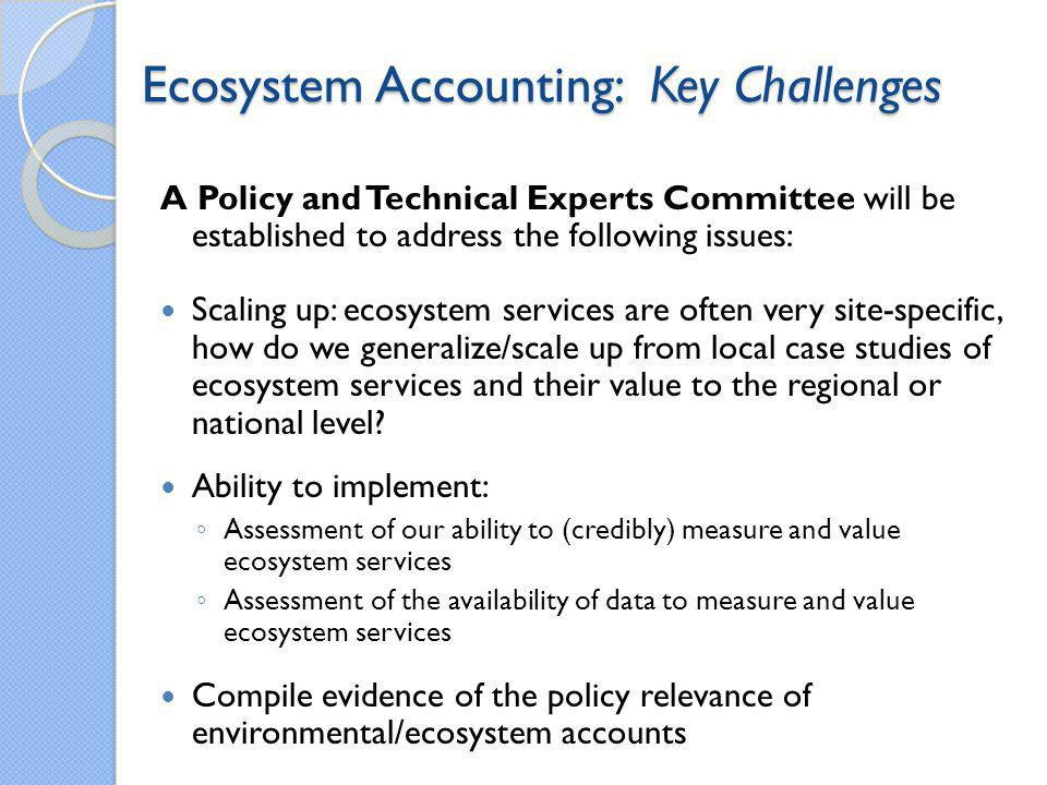 Ecosystem Accounting: Key Challenges
