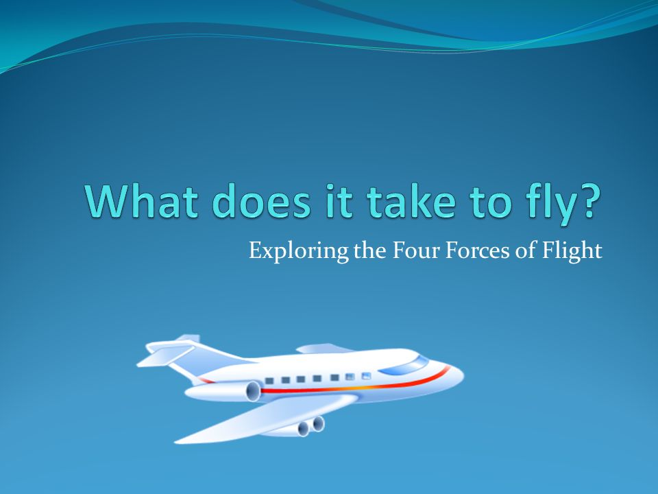 Exploring the Four Forces of Flight