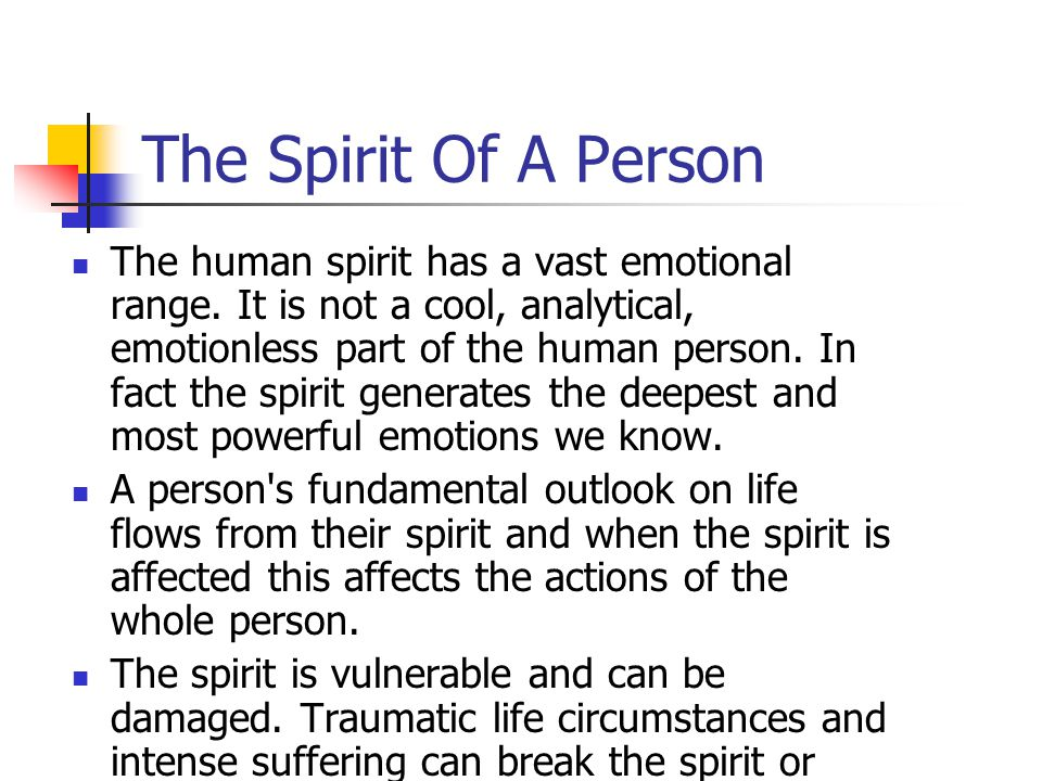The Spirit Of A Person