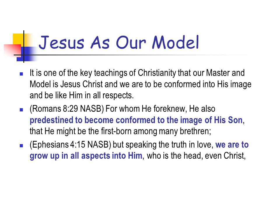 Jesus As Our Model
