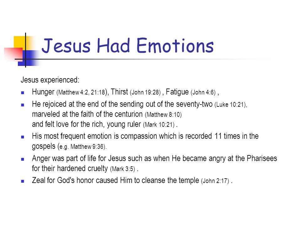 Jesus Had Emotions Jesus experienced: