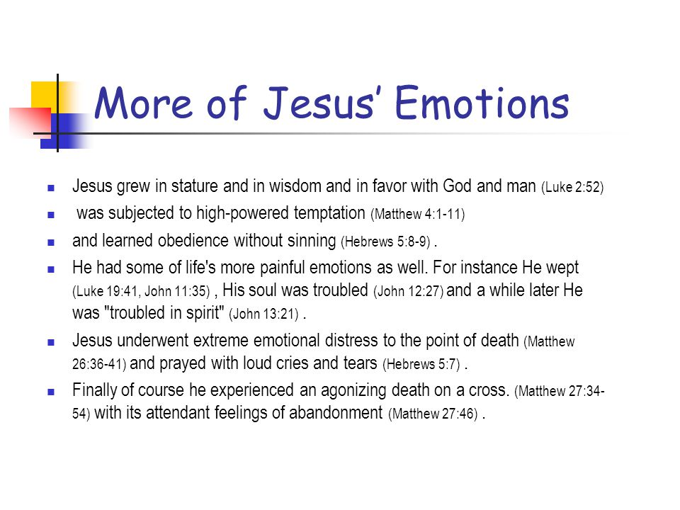 More of Jesus' Emotions
