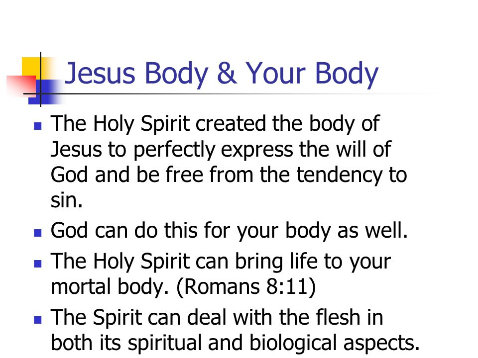 Jesus Body & Your Body The Holy Spirit created the body of Jesus to perfectly express the will of God and be free from the tendency to sin.