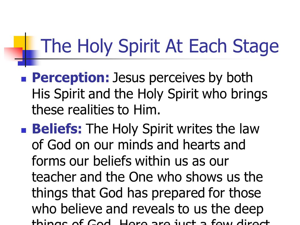 The Holy Spirit At Each Stage