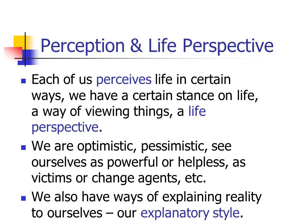 Perception & Life Perspective
