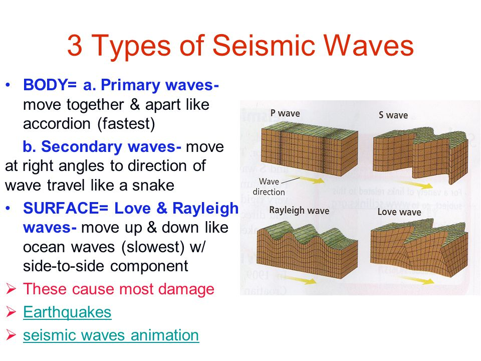 3 Types of Seismic Waves BODY= a. Primary waves- move together & apart like accordion (fastest)