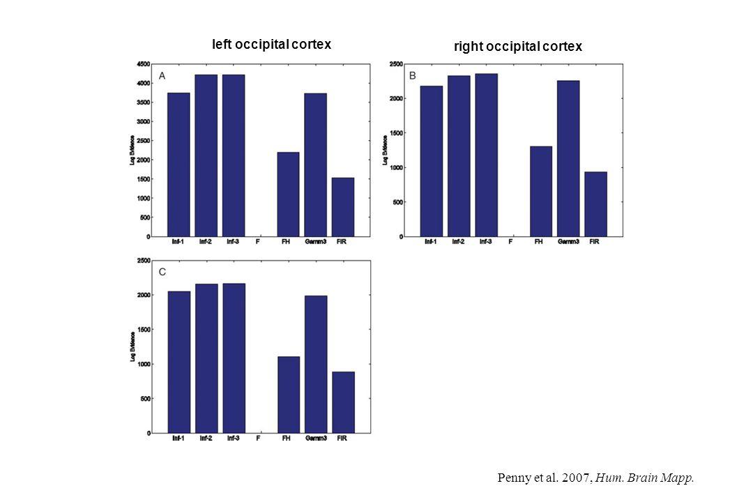 left occipital cortex right occipital cortex Penny et al. 2007, Hum. Brain Mapp.