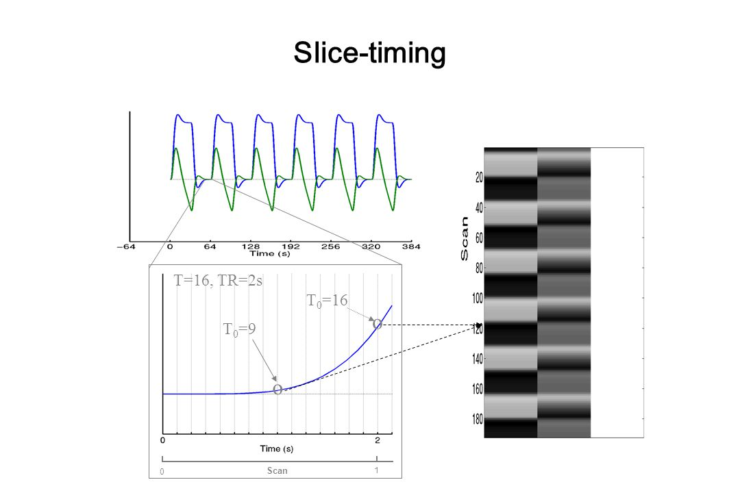 Slice-timing T=16, TR=2s Scan 1 o T0=16 o T0=9