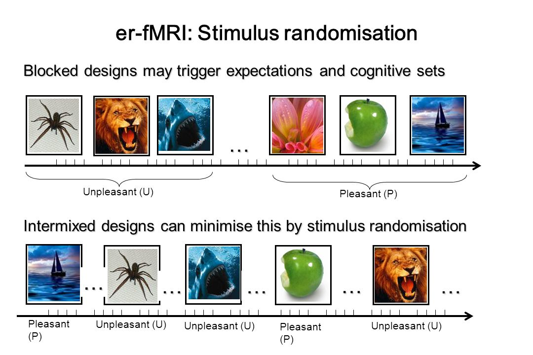 er-fMRI: Stimulus randomisation