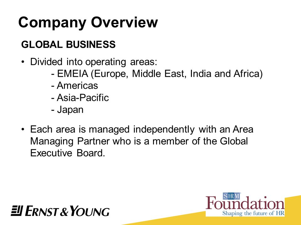 Company Overview GLOBAL BUSINESS