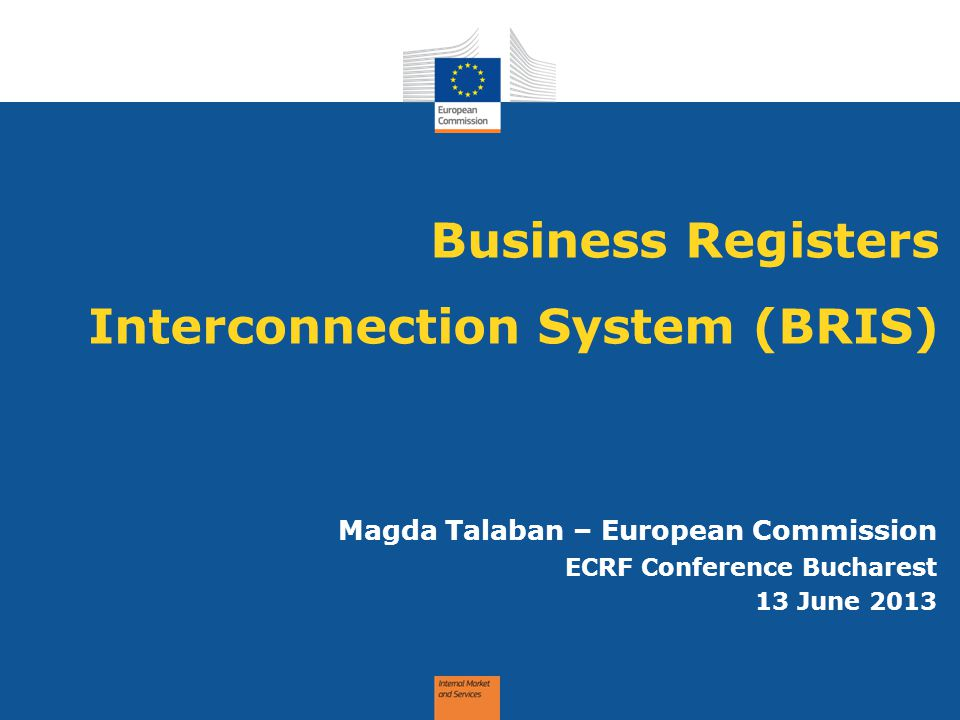Business Registers Interconnection System (BRIS)