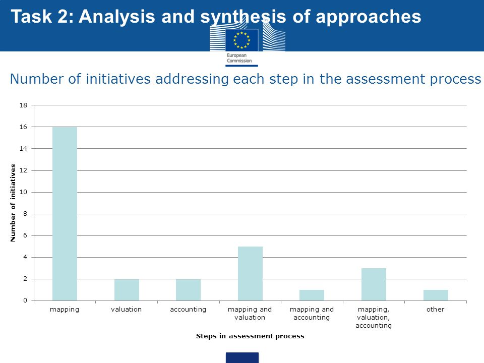Number of initiatives addressing each step in the assessment process
