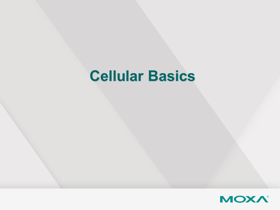 Cellular Basics Now let's take a look at some cellular basic concepts.
