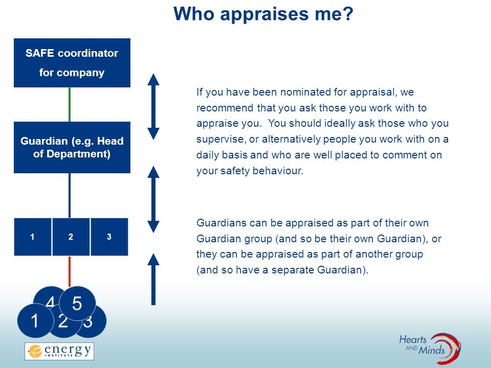 Who appraises me 4 5 1 2 3 SAFE coordinator for company