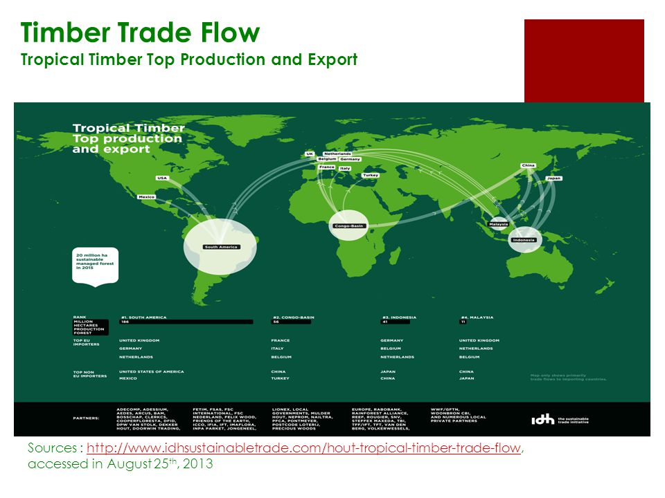 Timber Trade Flow Tropical Timber Top Production and Export