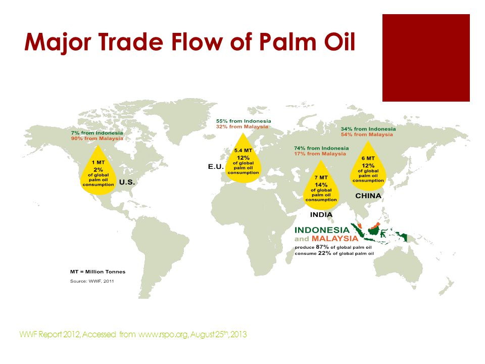 Major Trade Flow of Palm Oil