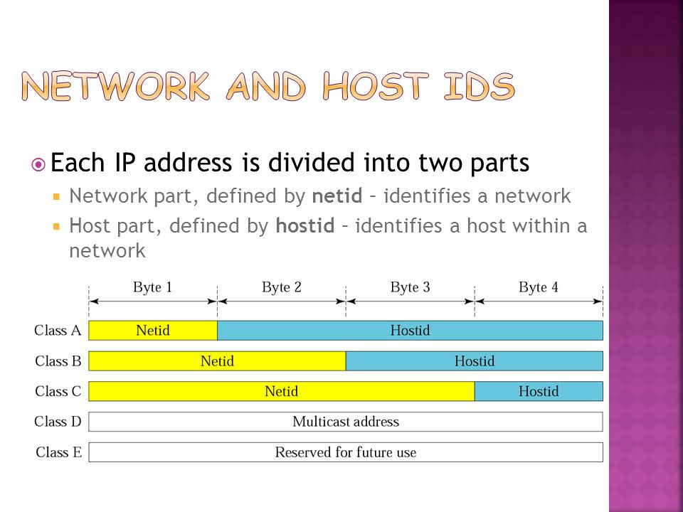 Network and Host IDs Each IP address is divided into two parts