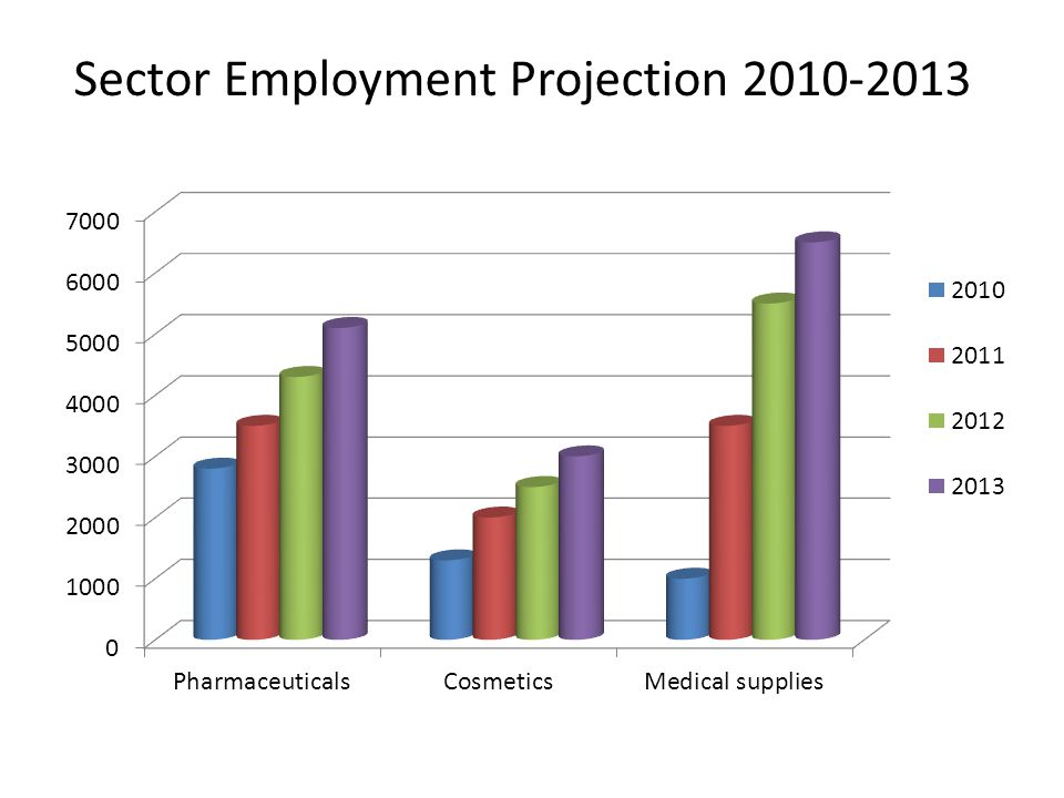 Sector Employment Projection 2010-2013