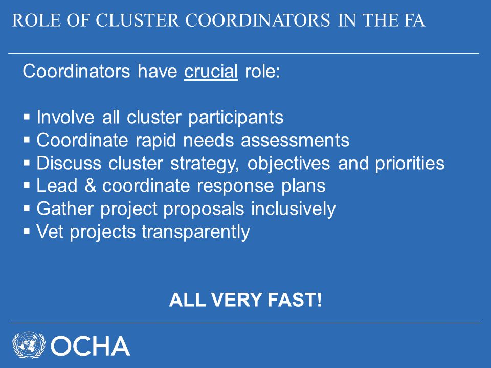 ROLE OF CLUSTER COORDINATORS IN THE FA