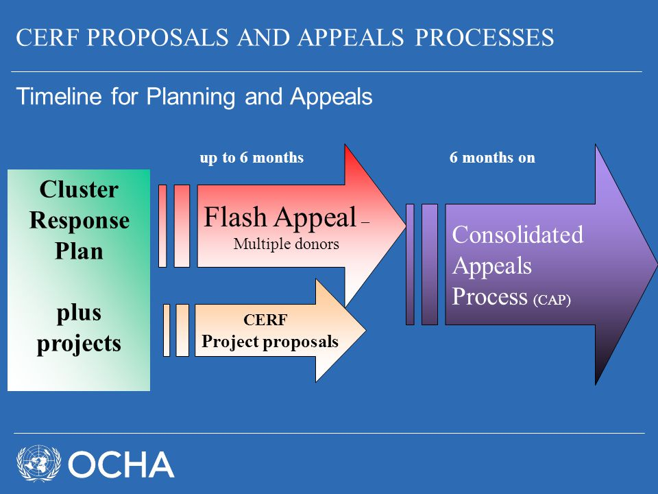 Flash Appeal – CERF PROPOSALS AND APPEALS PROCESSES Cluster