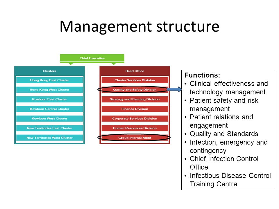 Management structure Functions: