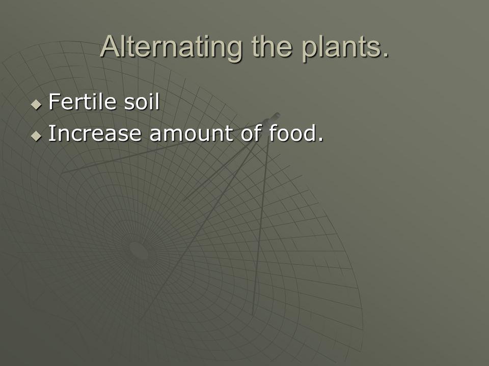 Alternating the plants.