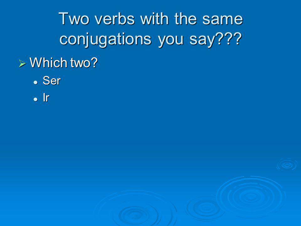 Two verbs with the same conjugations you say