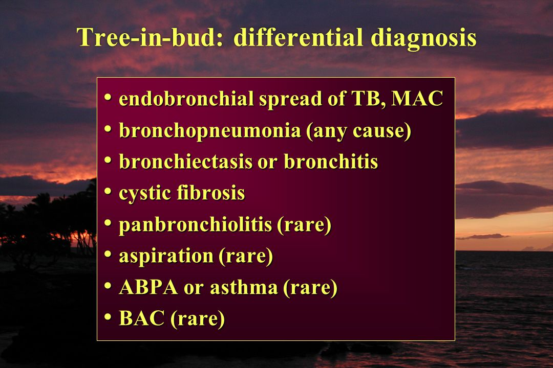 Tree-in-bud: differential diagnosis