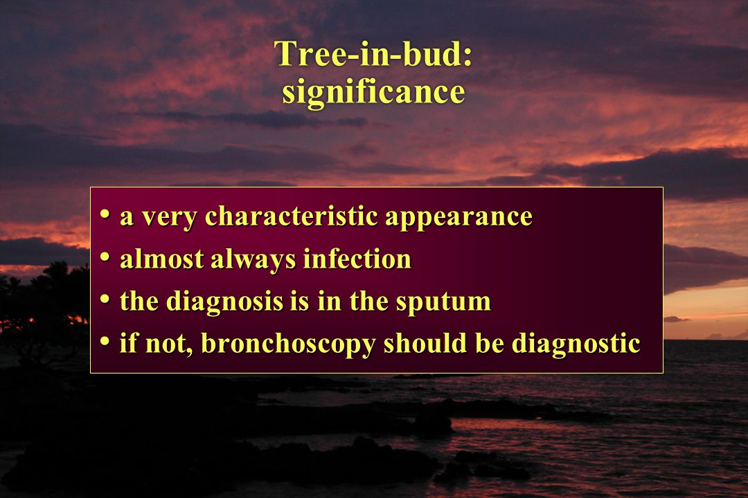 Tree-in-bud: significance