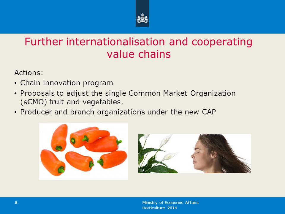 Further internationalisation and cooperating value chains