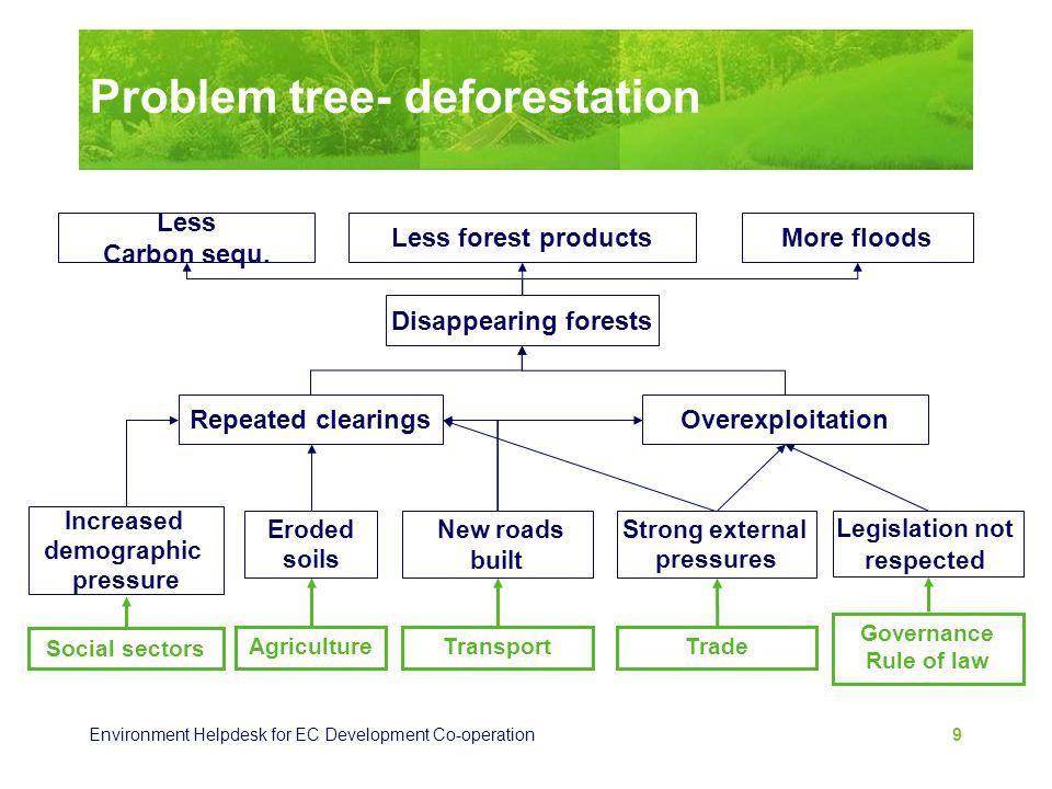Problem tree- deforestation