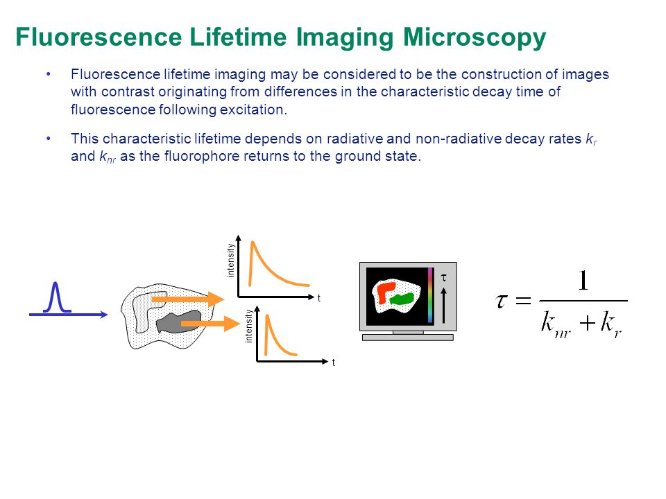 Fluorescence Lifetime Imaging Microscopy