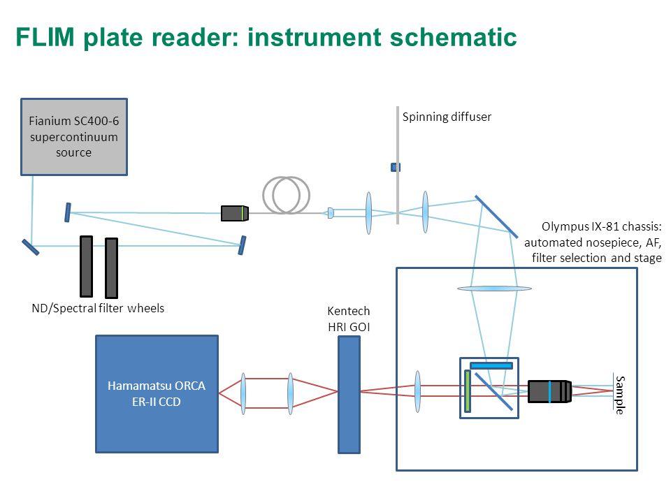 FLIM plate reader: instrument schematic