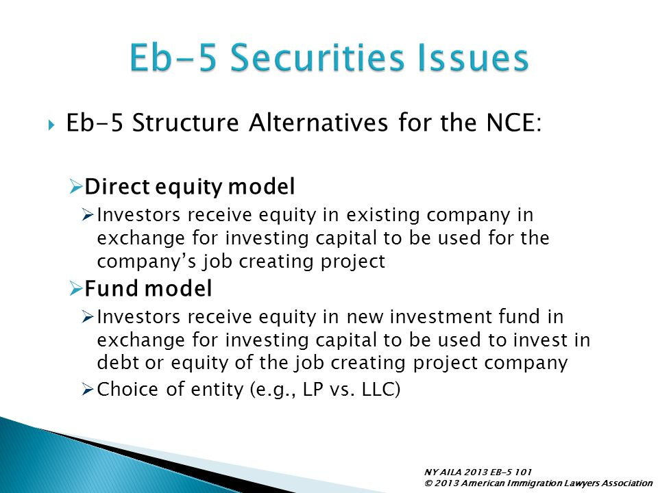 Eb-5 Securities Issues Eb-5 Structure Alternatives for the NCE:
