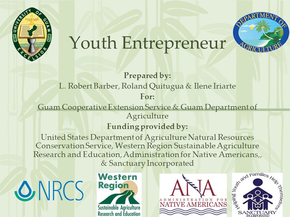 Youth Entrepreneur Prepared by: