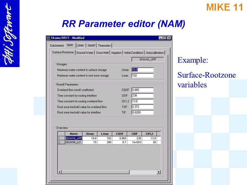 RR Parameter editor (NAM)