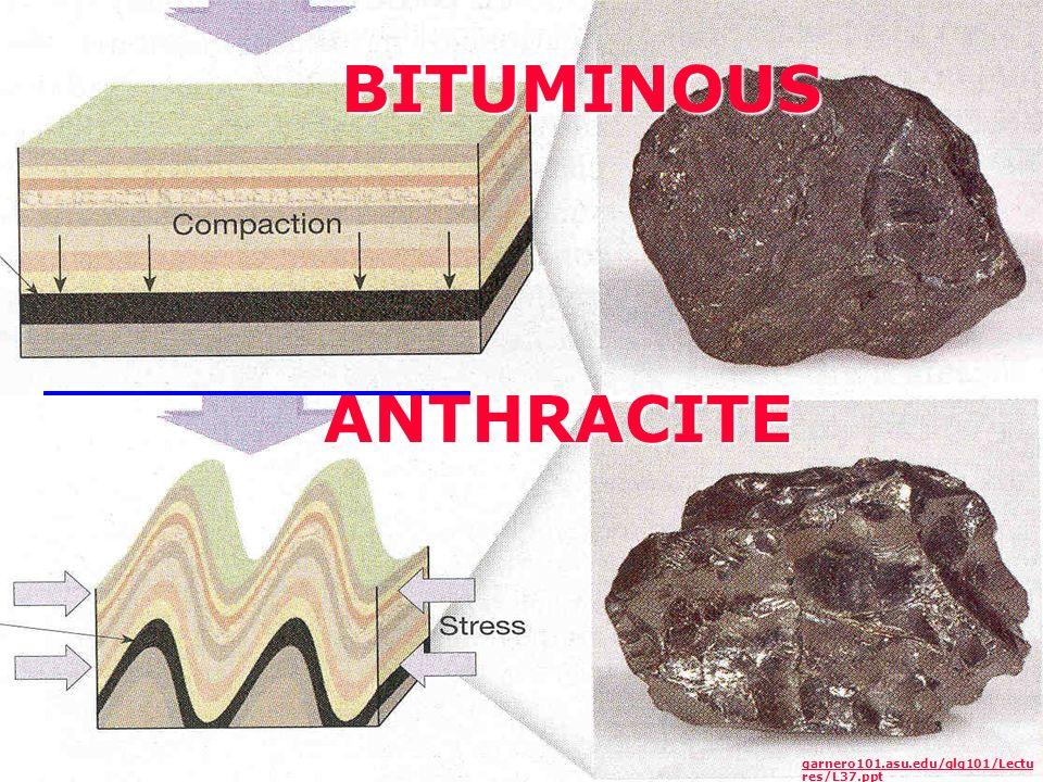BITUMINOUS ANTHRACITE garnero101.asu.edu/glg101/Lectu res/L37.ppt