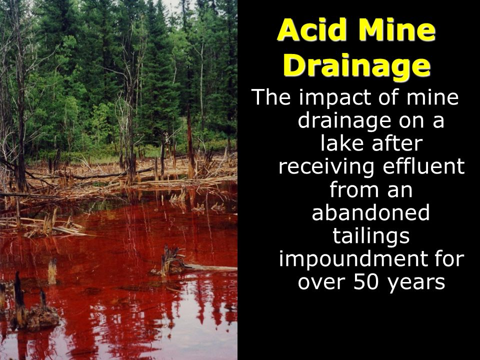 Acid Mine Drainage The impact of mine drainage on a lake after receiving effluent from an abandoned tailings impoundment for over 50 years.