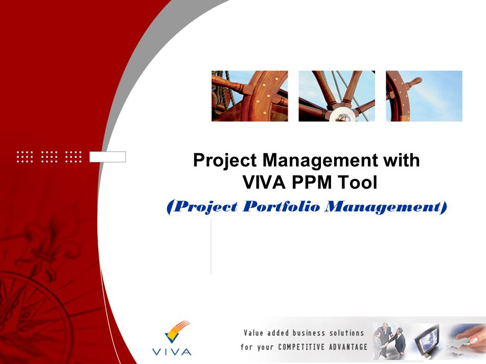 Project Management with VIVA PPM Tool (Project Portfolio Management)