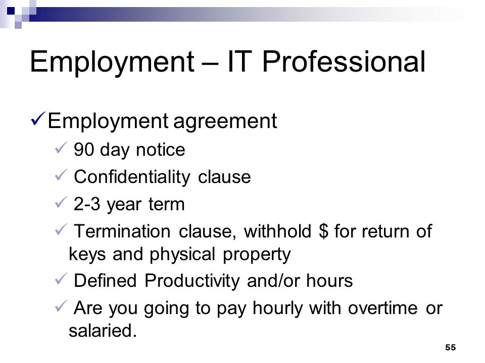 Employment – IT Professional