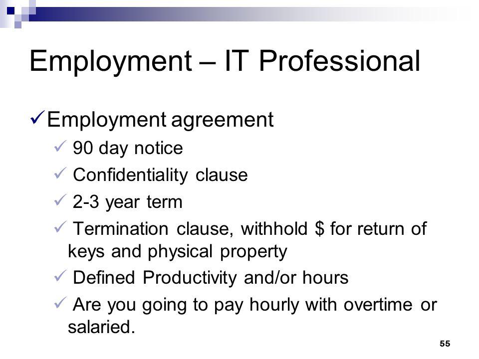 Employment – IT Professional
