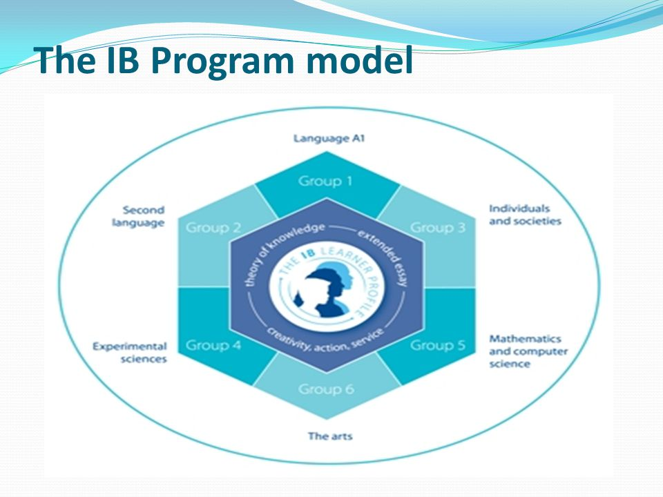 The IB Program model