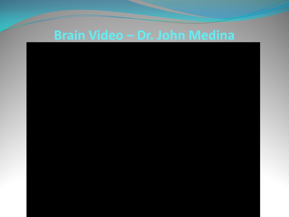 Brain Video – Dr. John Medina