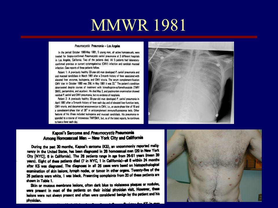 MMWR 1981