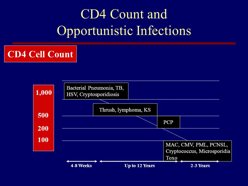 CD4 Count and Opportunistic Infections