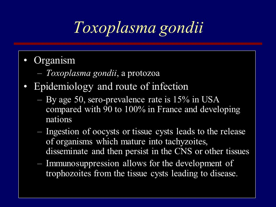 Toxoplasma gondii Organism Epidemiology and route of infection