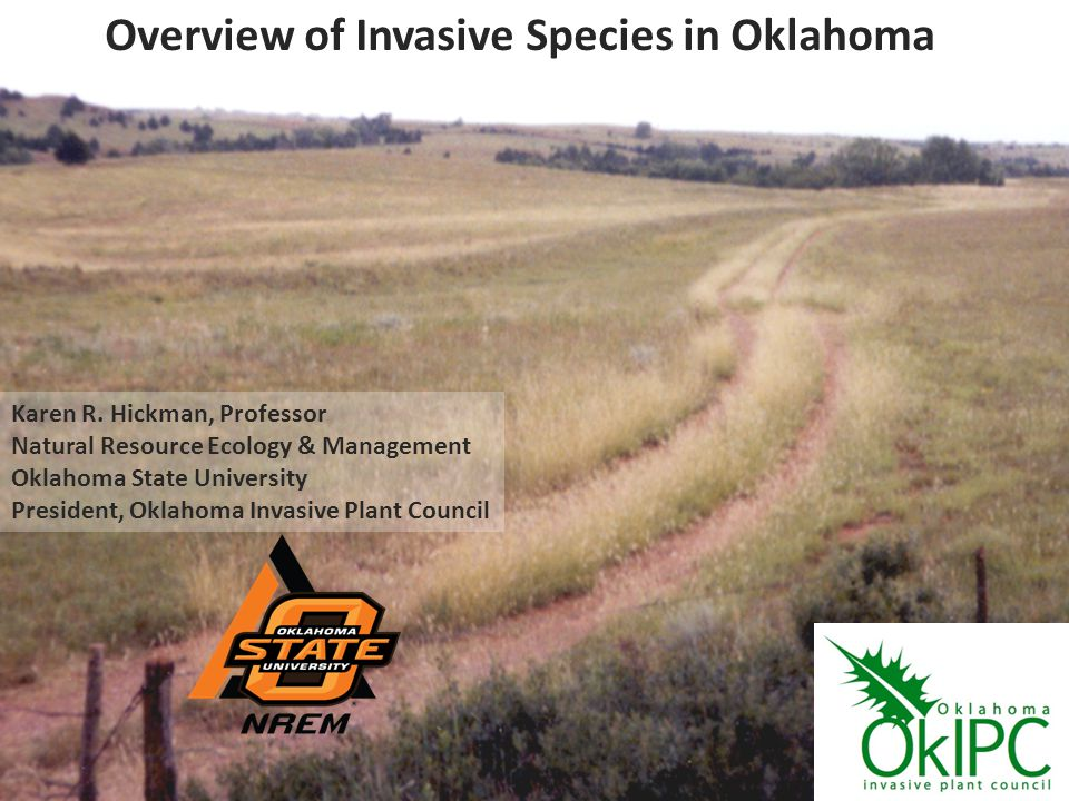 Overview of Invasive Species in Oklahoma